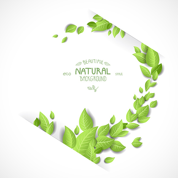 Green Leaves Nature Vector Background 491 tree organic nature leaves green free frame eco branch background
