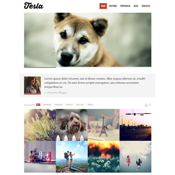 Tesla WP WordPress Portfolio Theme Template wp wordpress ui elements ui theme tesla template portfolio free download free