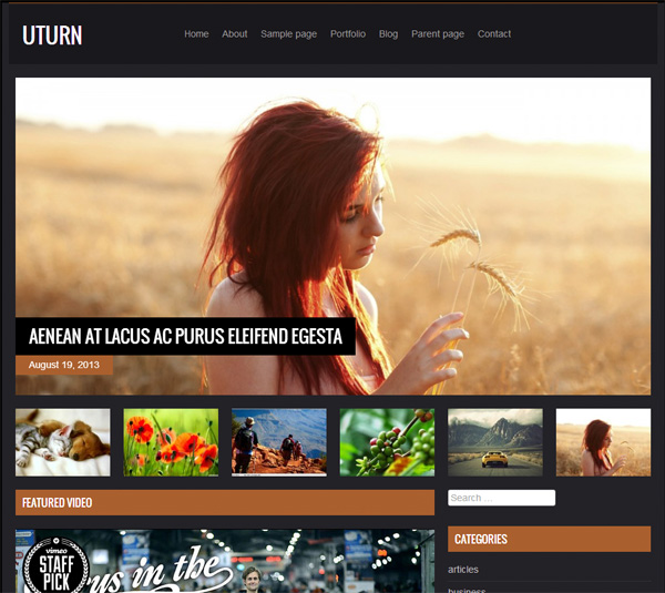 UTurn Dark WordPress WP Theme Website wp wordpress website webpage video ui elements theme template php games free download free download dark css blog