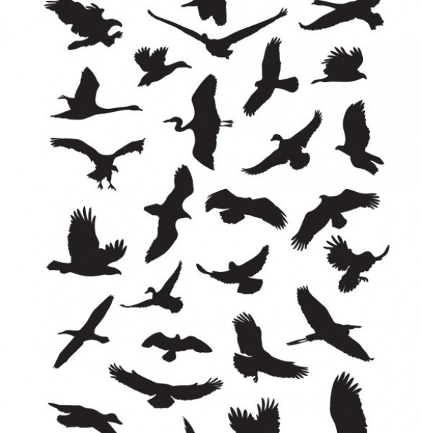 41 Flying Birds Silhouettes Vector Graphics web vector unique ui elements ui stylish silhouettes set quality pack original new modern interface hi-res heron HD hawk gull fresh free download free flying eps elements eagle duck download detailed design creative crane clean birds ai