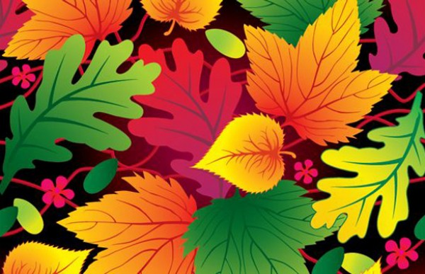 Vivid Orange & Green Background vectors vector graphic vector unique quality photoshop pattern pack original orange modern leaves leaf illustrator illustration high quality green fresh free vectors free download free Fall download creative background ai