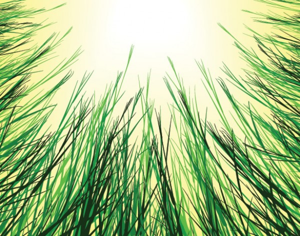 Grasses in the Sun Vector Background web vectors vector graphic vector unique ultimate sunshine sun summer spring quality photoshop pack original new nature modern meadow illustrator illustration high quality grasses grass fresh free vectors free download free field download design creative background ai