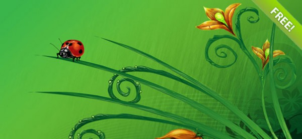 16 Summer Floral Background Set waterlily vectors vector graphic vector unique summer quality photoshop pack original nature modern ladybug illustrator illustration high quality fresh free vectors free download free flower floral dragonfly download creative butterfly background ai