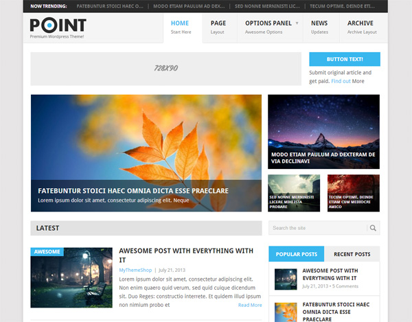 Point WordPress WP Theme Template wp wordpress widgets website ui elements theme template seo responsive post point php options panel info boxes free download free download css
