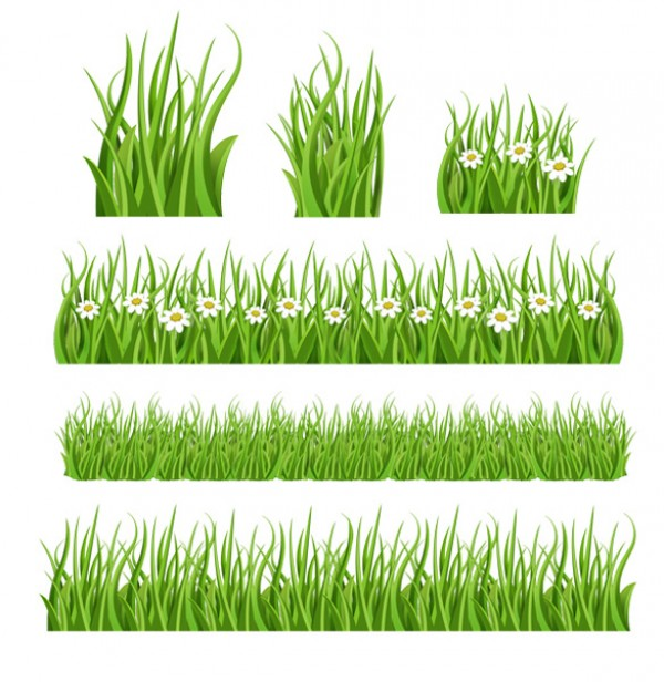 6 Green Grass Illustrations vectors vector graphic vector unique summer spring quality photoshop pack original modern lawn illustrator illustration high quality green grass green grass fresh free vectors free download free eco download daisy daisies creative background ai
