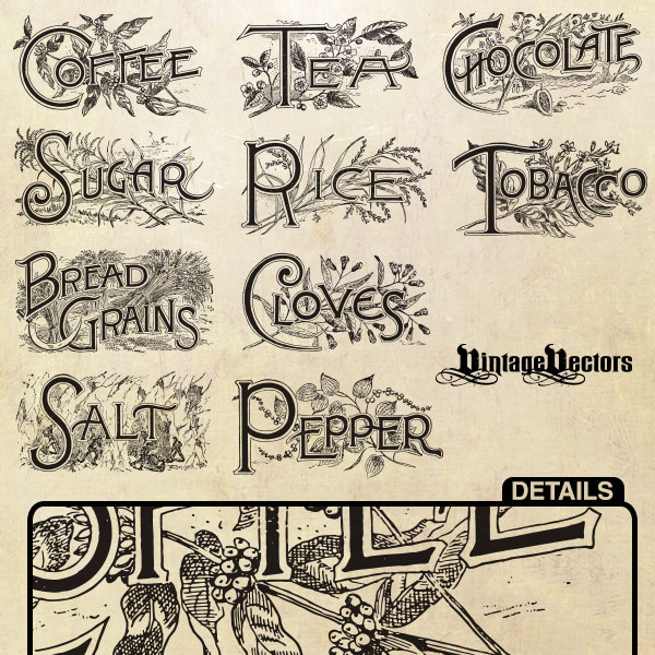 Vintage Food Labels and Topography Vectors vintage food labels vintage vector tobacco tea sugar staples salt rice plants pepper grains free food labels food drawing coffee cloves chocolate art