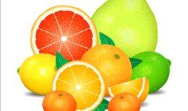 Fresh orange with lemon vector