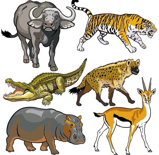 Vector set of wild animals design graphic 06 wild graphic animals Animal