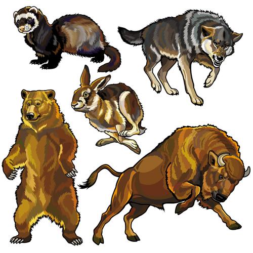 Vector set of wild animals design graphic 04 wild graphic animals Animal