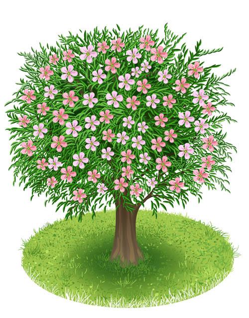 Spring green tree design vector graphic 02 vector graphic spring green graphic