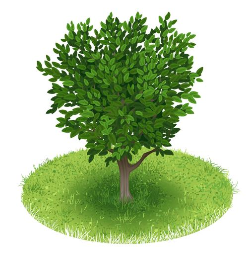 Spring green tree design vector graphic 03 vector graphic spring green graphic