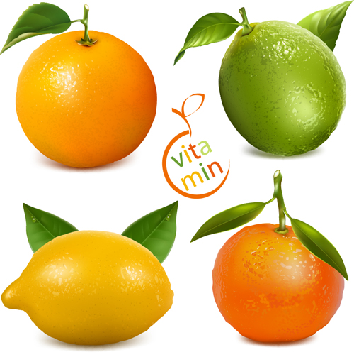 Fresh orange and lemon vector material orange material lemon fresh
